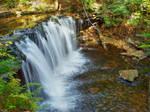 Ricketts Glen State Park 94