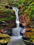 Ricketts Glen State Park 96