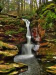 Ricketts Glen State Park 100