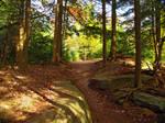 Ricketts Glen State Park 112