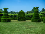 Longwood Gardens 30