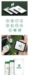 Banese App by Bebecca