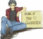 Honk 4 Quidditch