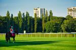 The Great Warsaw Horserace 2021 II