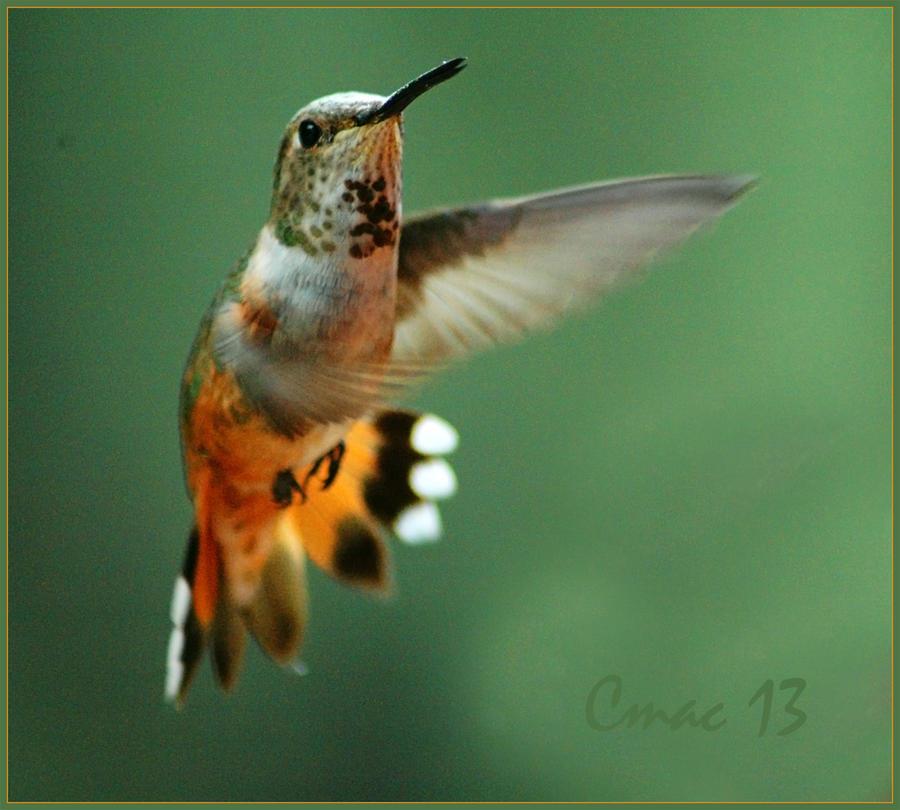 mid-air 8 by Cmac13