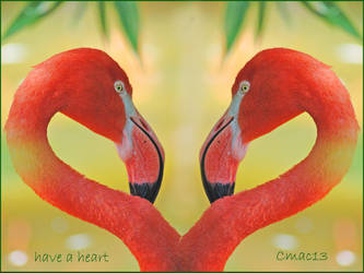 have a heart by Cmac13