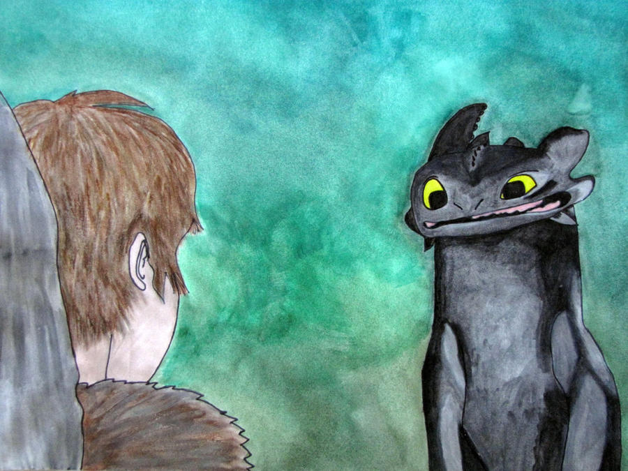 HTTYD: Hiccup and Toothless by Teh-Pandacoon