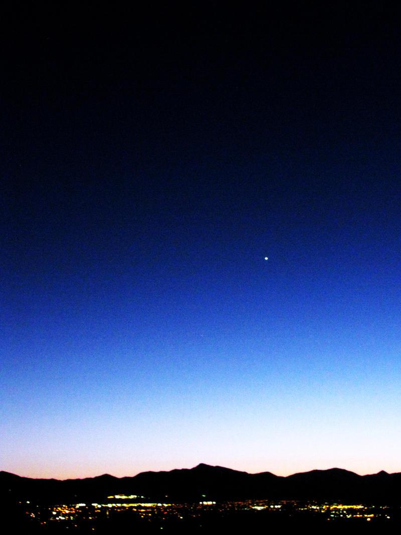 Blue Venus by Teh-Pandacoon