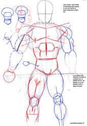 Anatomia de Dragon Ball by albertocubatas