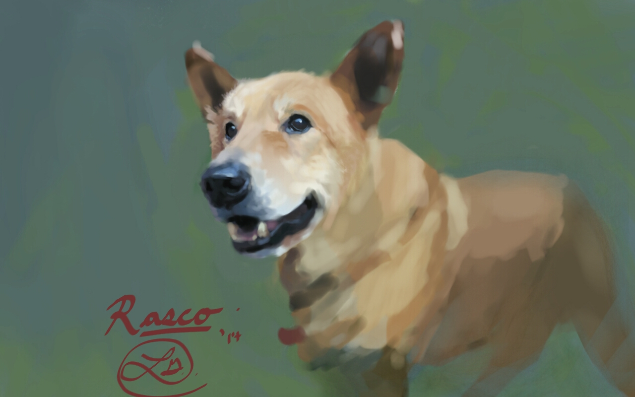 rasco by linzoy