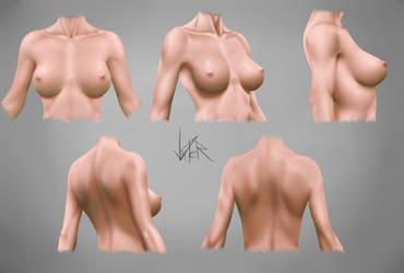 Female Torso Practice by ViiPerArt