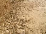 mud-stuck06