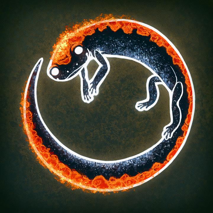 Spirit Salamander by Amaruuk