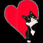 Tuxedo Cat Valentine Heart for Kitten and Animal