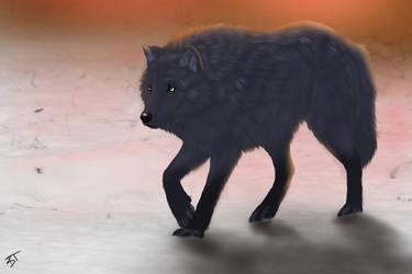 Blackfoot! by Lunicea