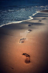 Follow me.. by Malleni