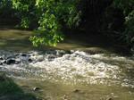 Little Stone Dam Whitewater