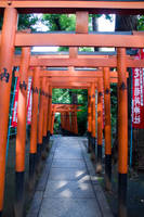 Torii at Ueno Park by SuperPope