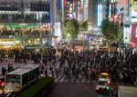 Shibuya Crosswalk