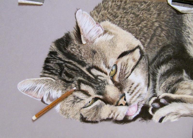 Zino drawing by mo62