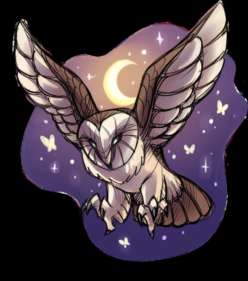 Barn Owl Night