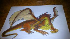 Dragon by peimai