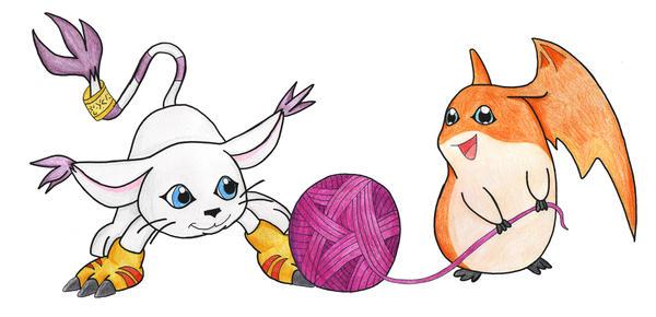 Gatomon And Patamon Digimon Gatomon And Patamon