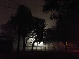 La niebla - The mist