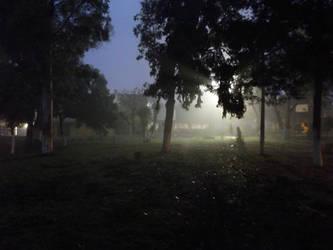 Frio amanecer - Cold Dawn