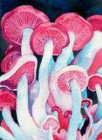 Shamanic Shrooms by PaintMyWorldRainbow