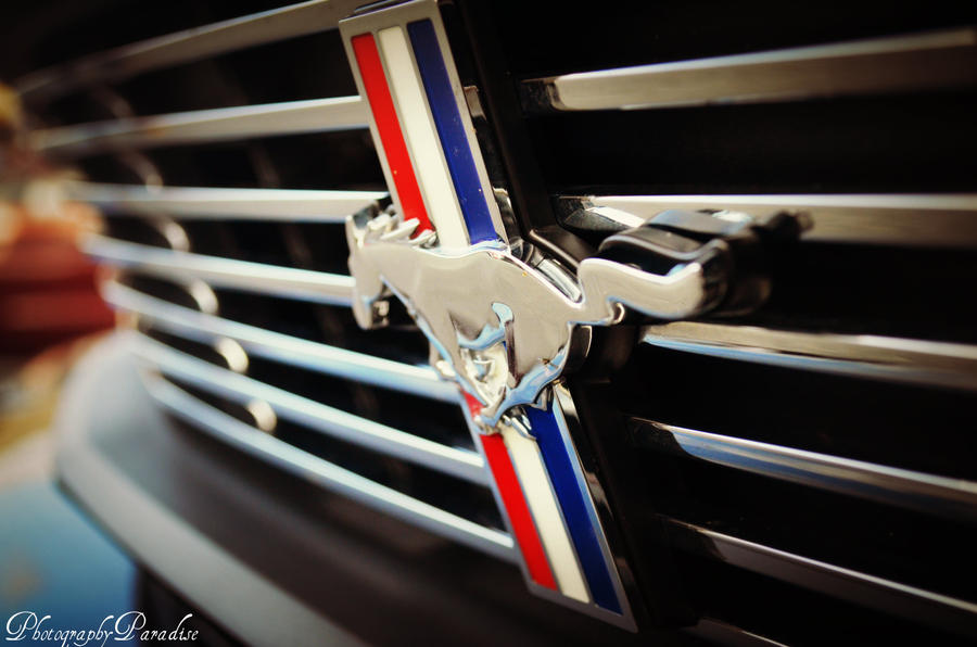 Symbol of a Stang by PhotographicCrypto