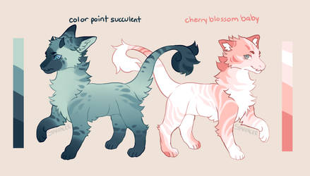 Sweet Scent - JBD ADOPTS
