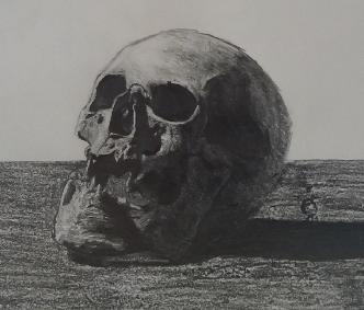 Skull study by spacelasagna