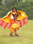 Native Fancy Shaw Dancer