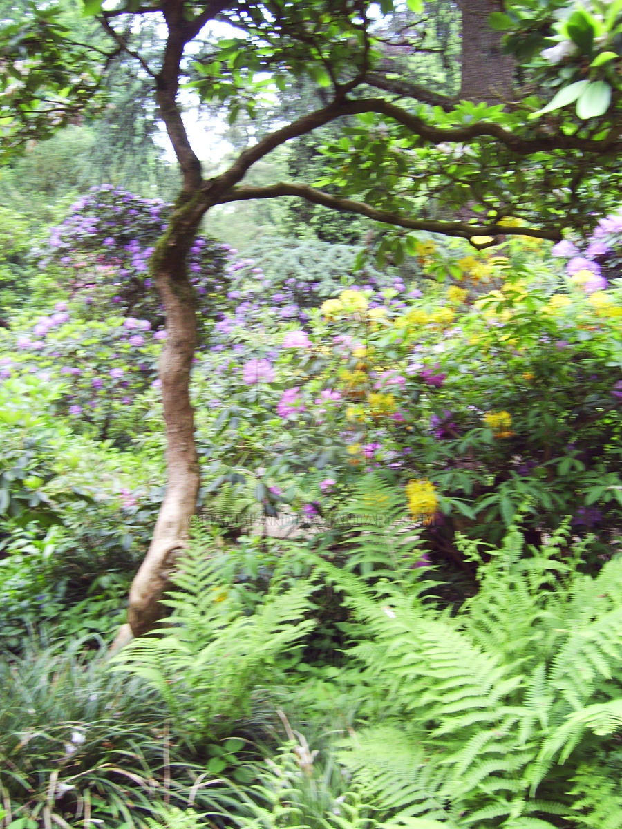 Botanischer Garten Muenster 20 By Bambiland On Deviantart