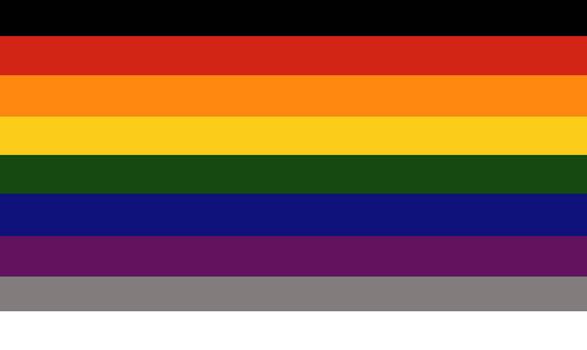Anarchist Pride Unity AnarchoCoalitionist Flag 2