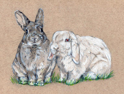 [Commission] Bunnies by Szonja-kun