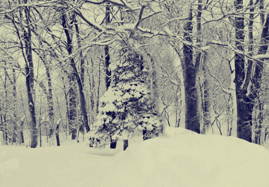 Let it Snow by masterank