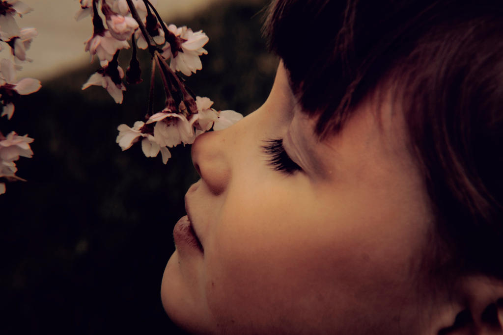 Smelling the flowers by photoartbyshannon