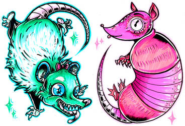 possum n armadillo by starblinx