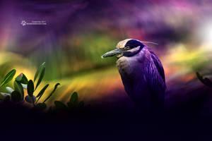 Sleeping in da colors by RadekDemjan