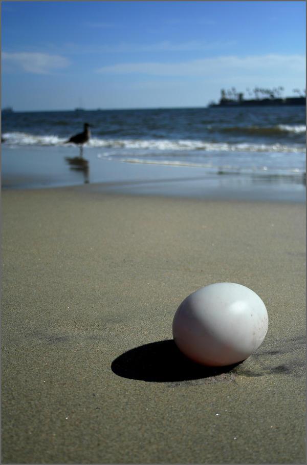 The Egg by wackycracka
