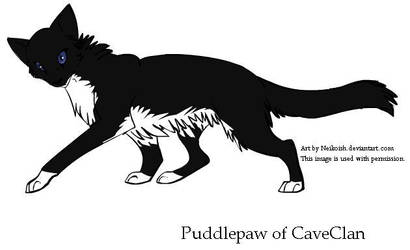 Puddlepaw of Caveclan by Seri-goyle
