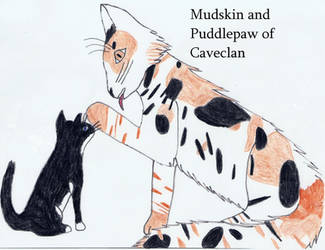Mudskin n Puddle-CaveClan by Seri-goyle