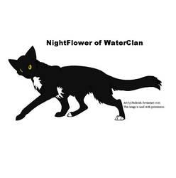 NightFlower of WaterClan