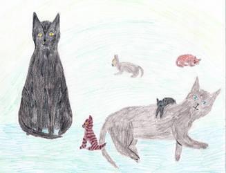 Contest Entry:Mistyfoot's kits by Seri-goyle