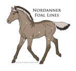 Foal 8680
