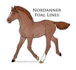 7989 foal design