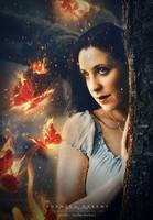 Burning Dreams by dreamswoman