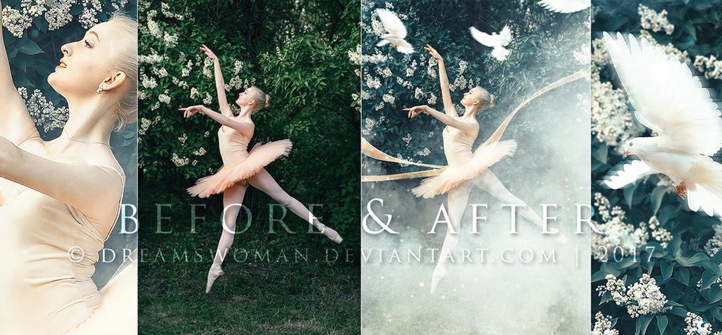 Flying Colours - Before and After by dreamswoman